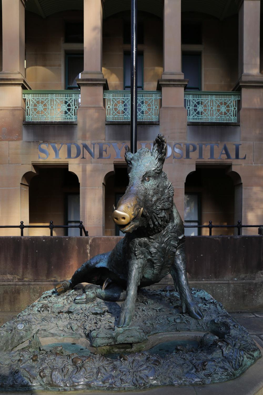 hospitalboar Sydney Hospital,  Sydney, Australia, 2015