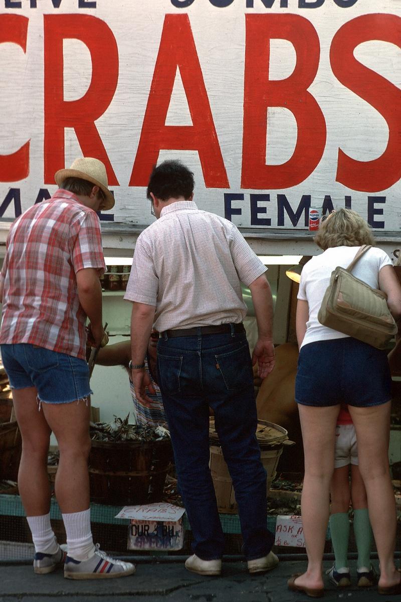 crabs Crabs, Cape Cod, Massachusetts, 1980