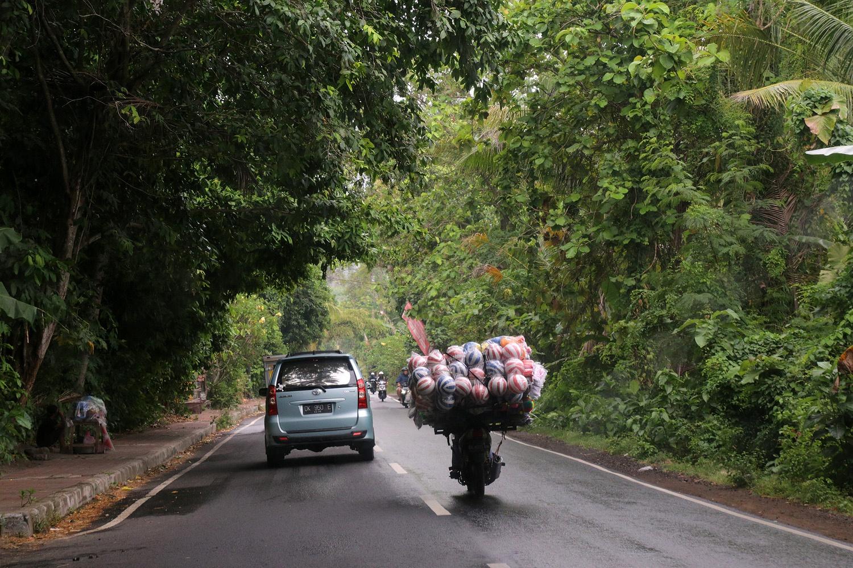 ballscooter