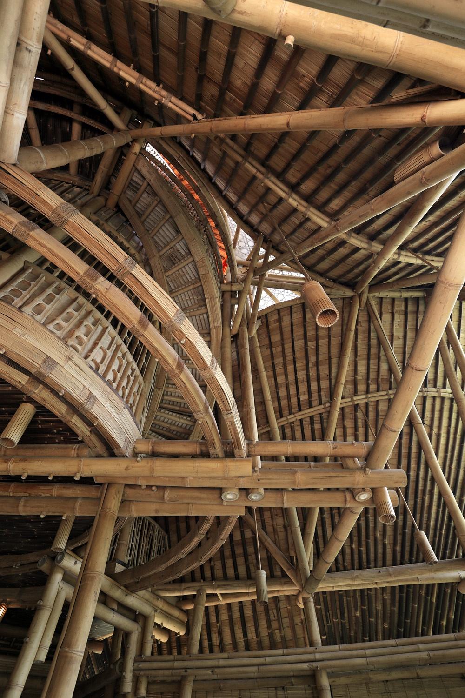 bambooarcsB