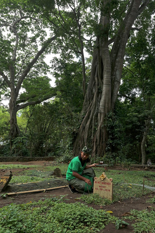 graveoffering Grave Offering,  Monkey Forest,  Ubud, Bali, Indonesia, 2016