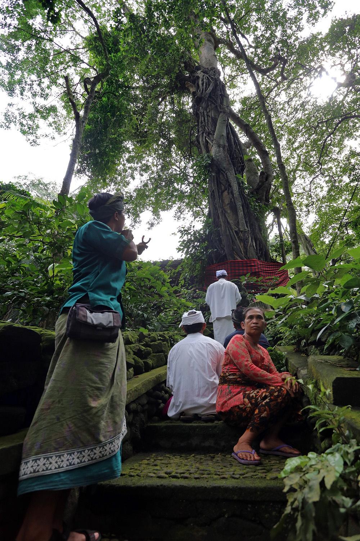 prayerguard Ceremony,  Monkey Forest,  Ubud, Bali, Indonesia, 2016