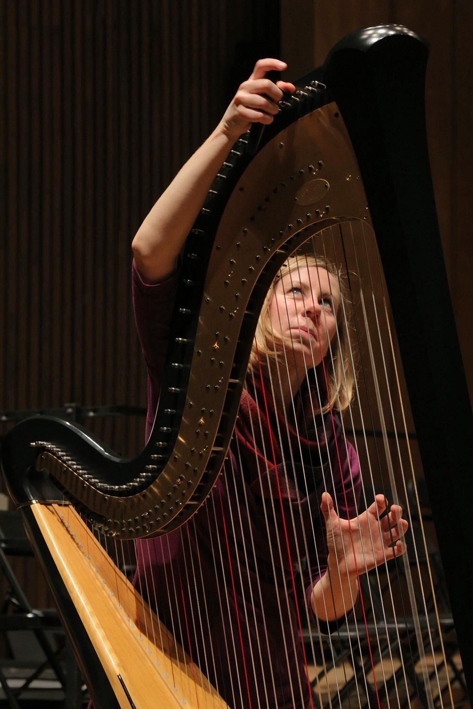 f15-harpist