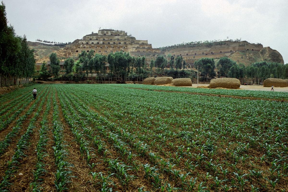 brigadefarm
