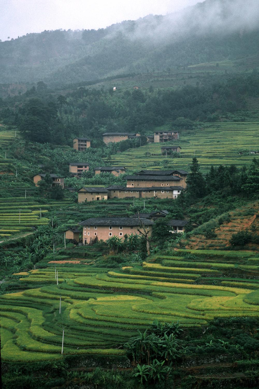 fujianhillside