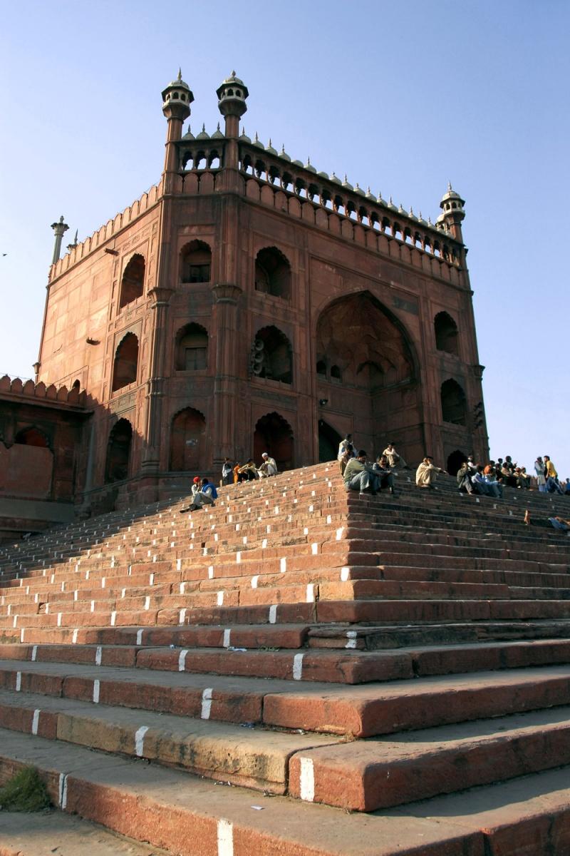 mosquesteps