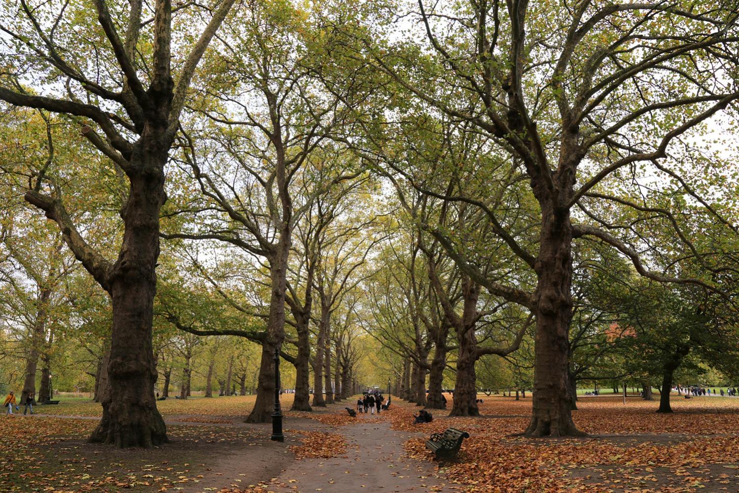 17-greenpark