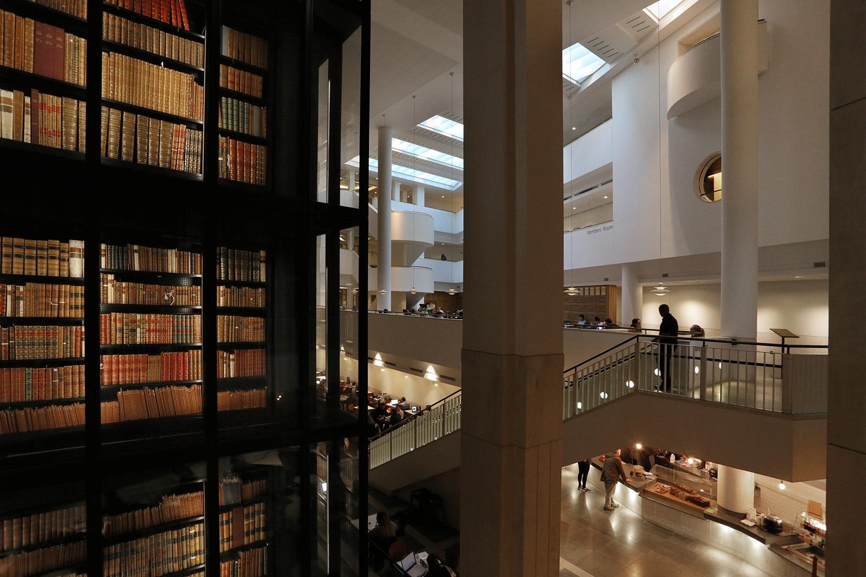 17-libraryF