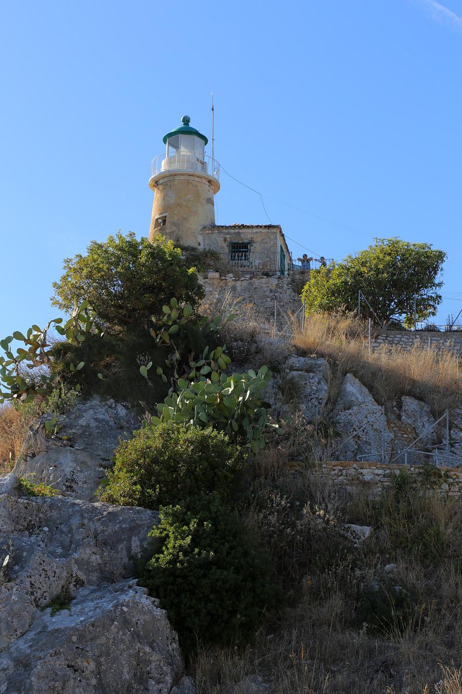 17-lighthousecactus
