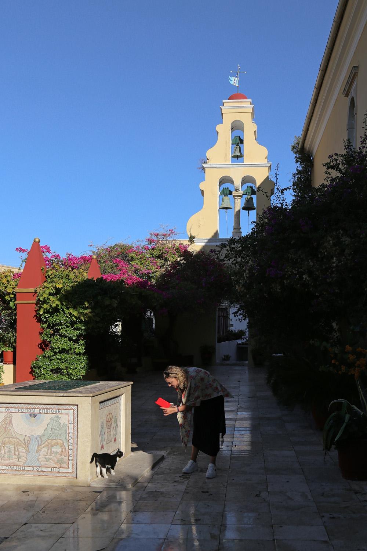 17-monasterycat