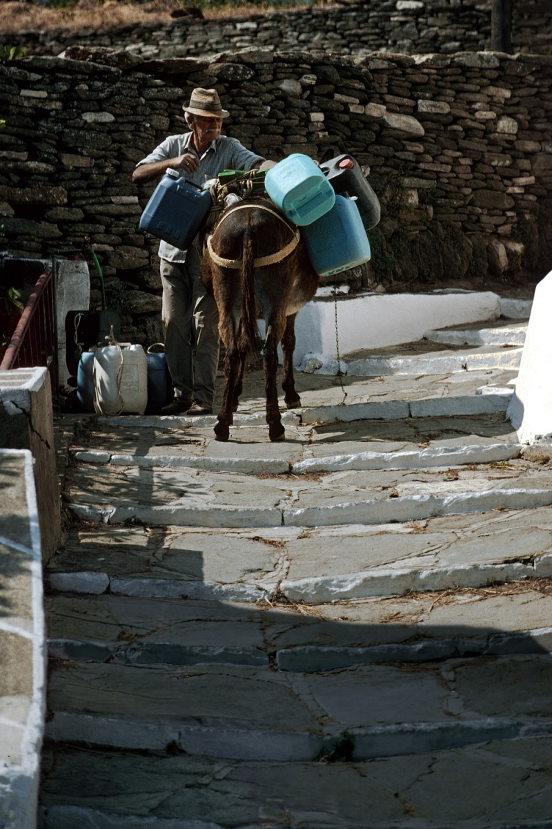 donkey Water, 