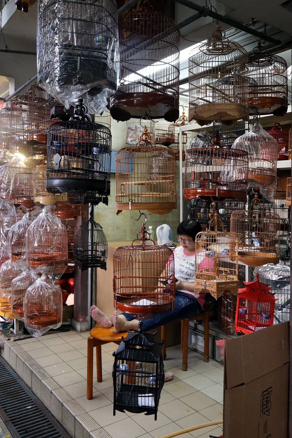 17-birdcages Bird Market, 