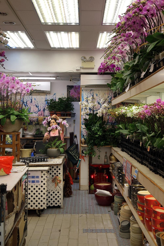 17-flowershop