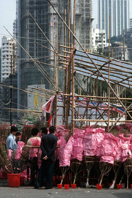 pinkstand