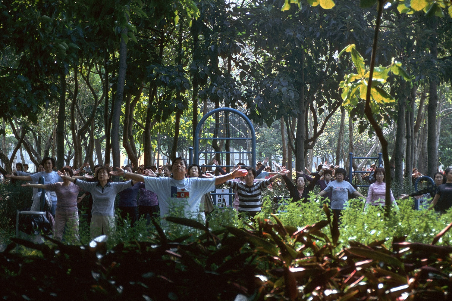 taichigroup Tai Chi Group, 