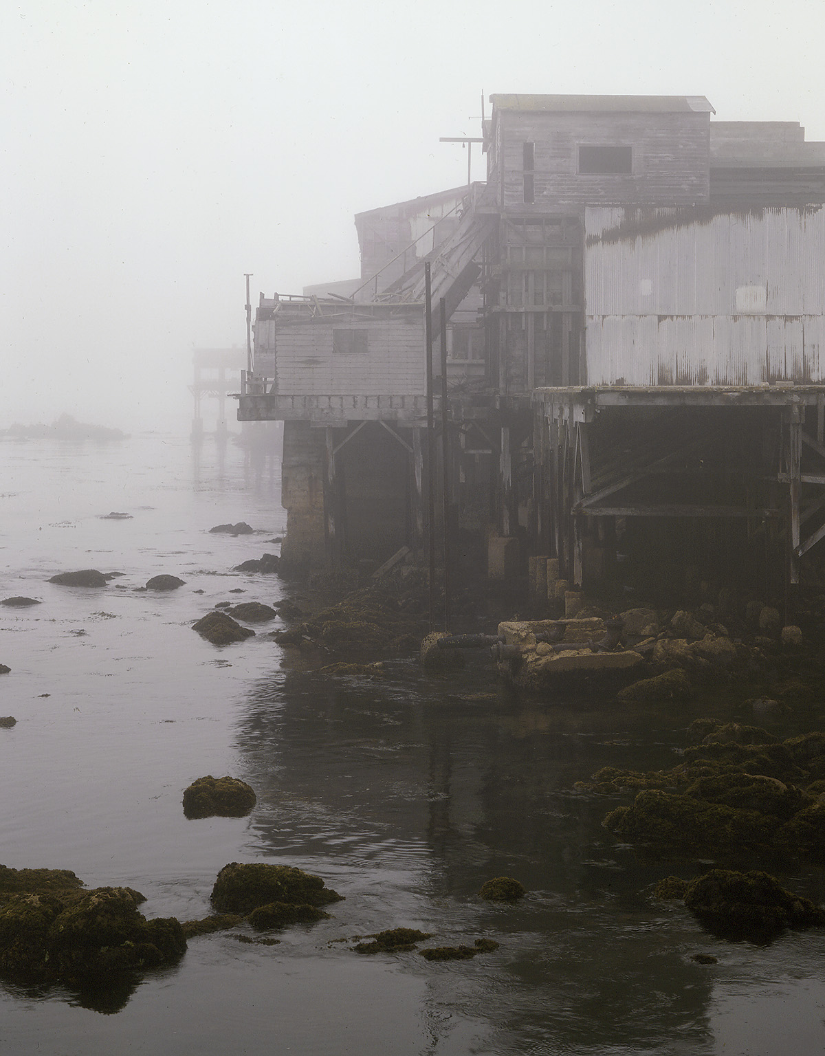fogview