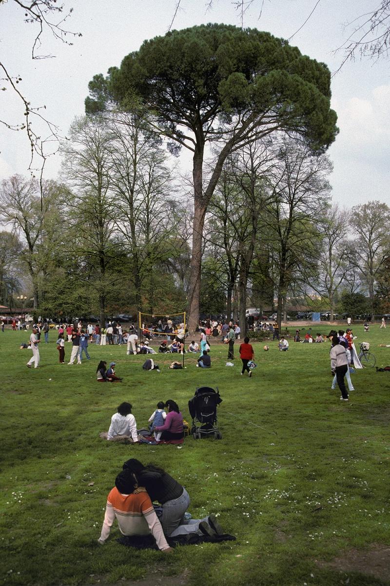 parkpine Park,  Florence, Italy, 2004