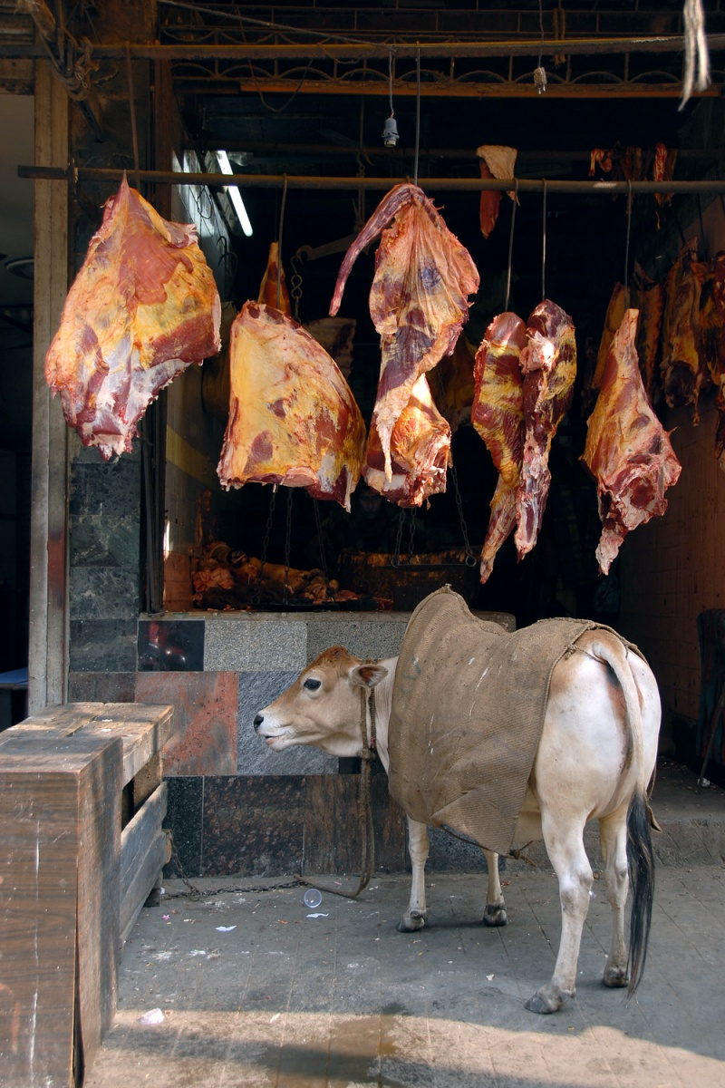 beef Beef,  Kolkata, India, 2007