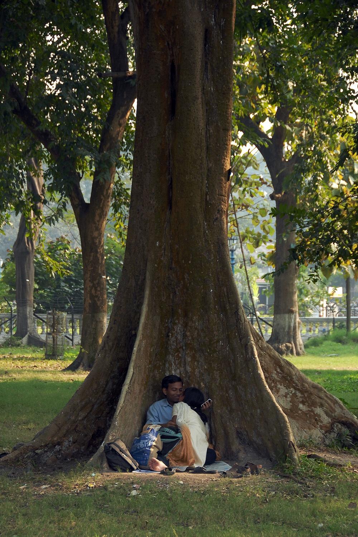 treecouple Victoria Memorial Garden,  Kolkata, India, 2007