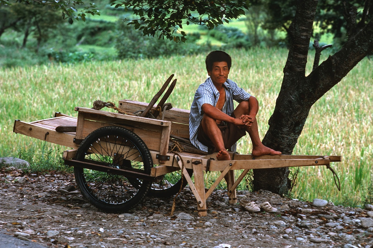cart Farm Cart, 