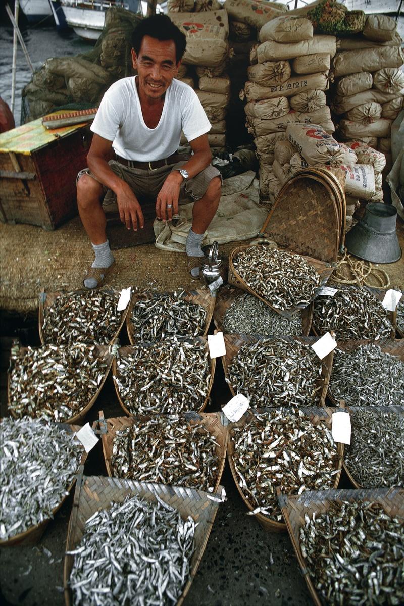fish Fish Vendor, Yeosu, Korea, 1977