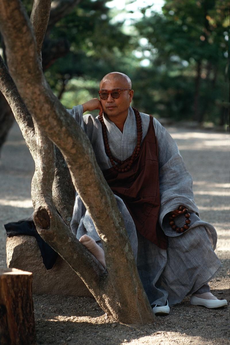 treemonk