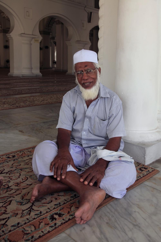 mosquesitter
