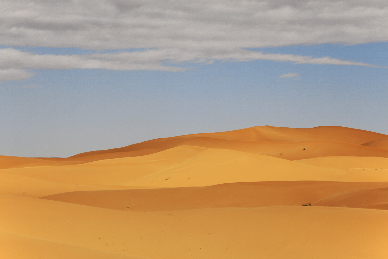 dunesC Erg Chebbi,  Merzouga, Morocco, 2013
