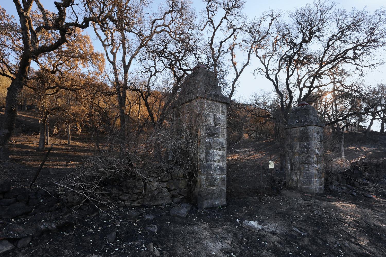17-firescapeG After the fire,  Soda Canyon Road,  Napa, California, 2017