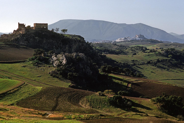 oliverascape