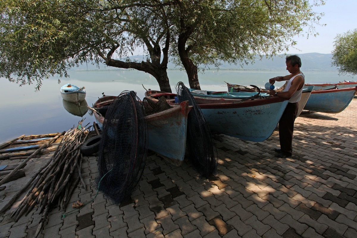 apolloniaboats