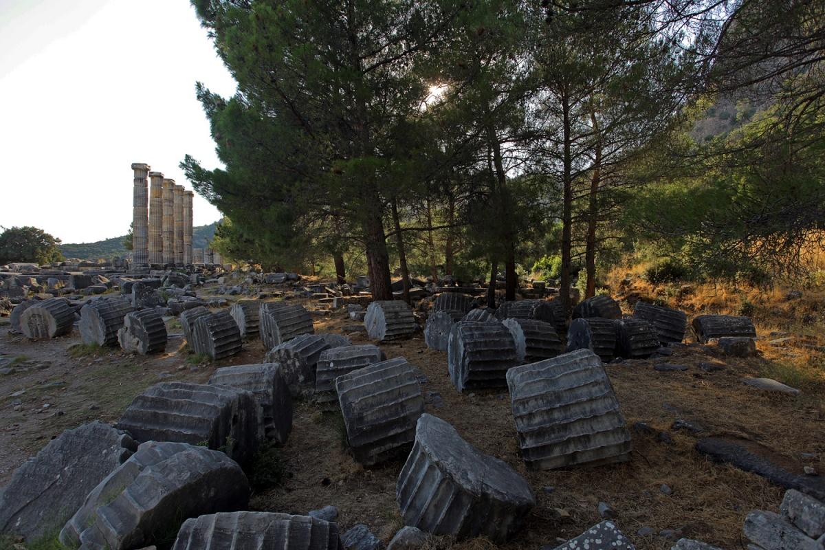 gearfield Temple of Athena,,  Priene, Turkey, 2010